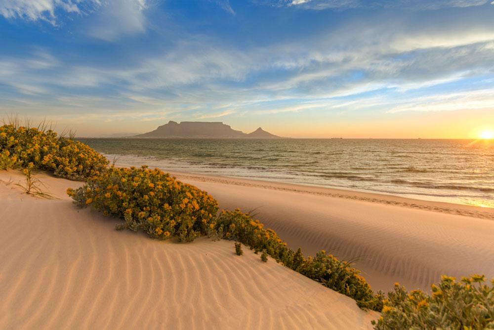 Viaggio in Sudafrica: Cape Town