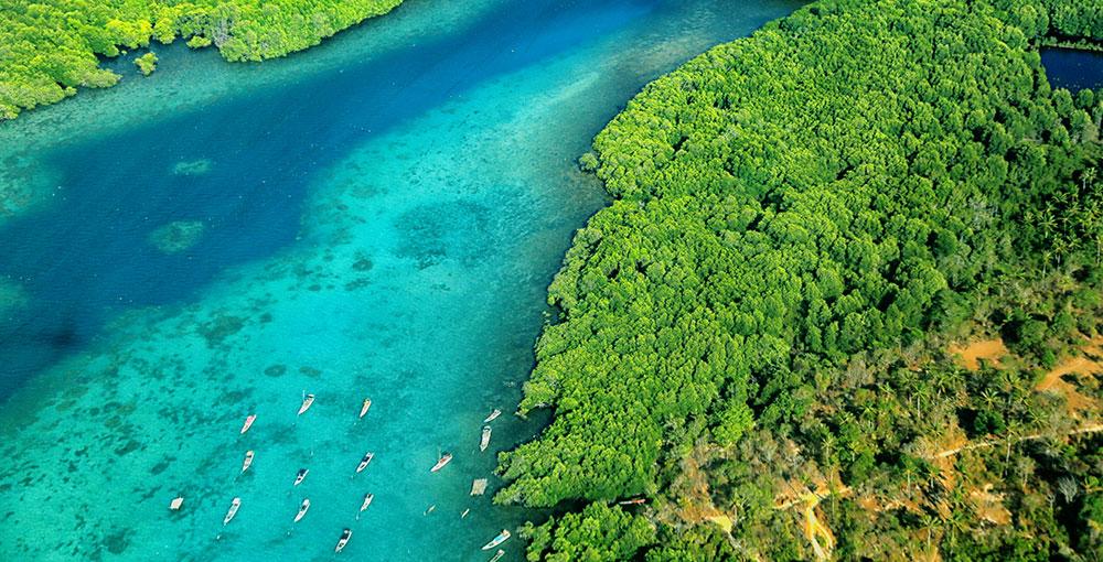 Isola di Giava