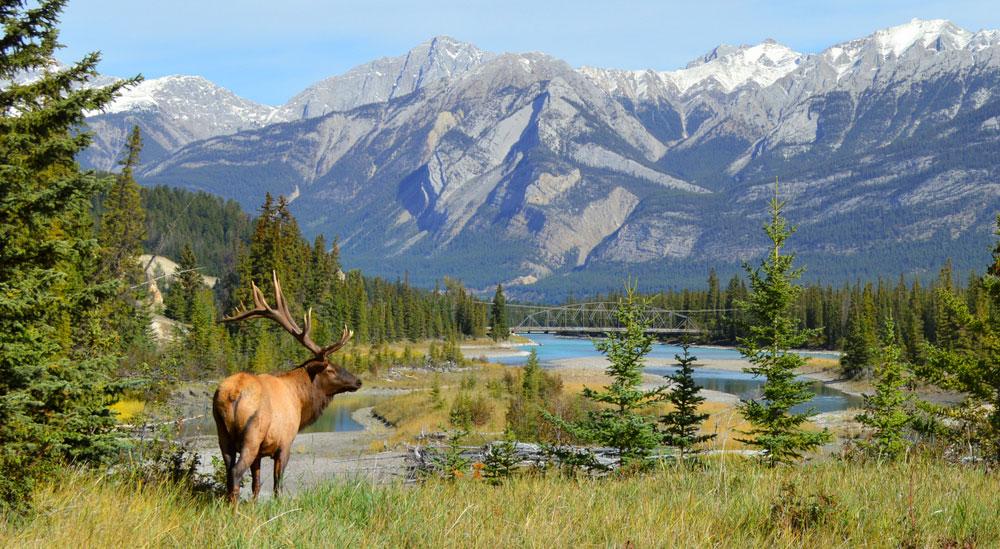 Parchi Naturali Canada
