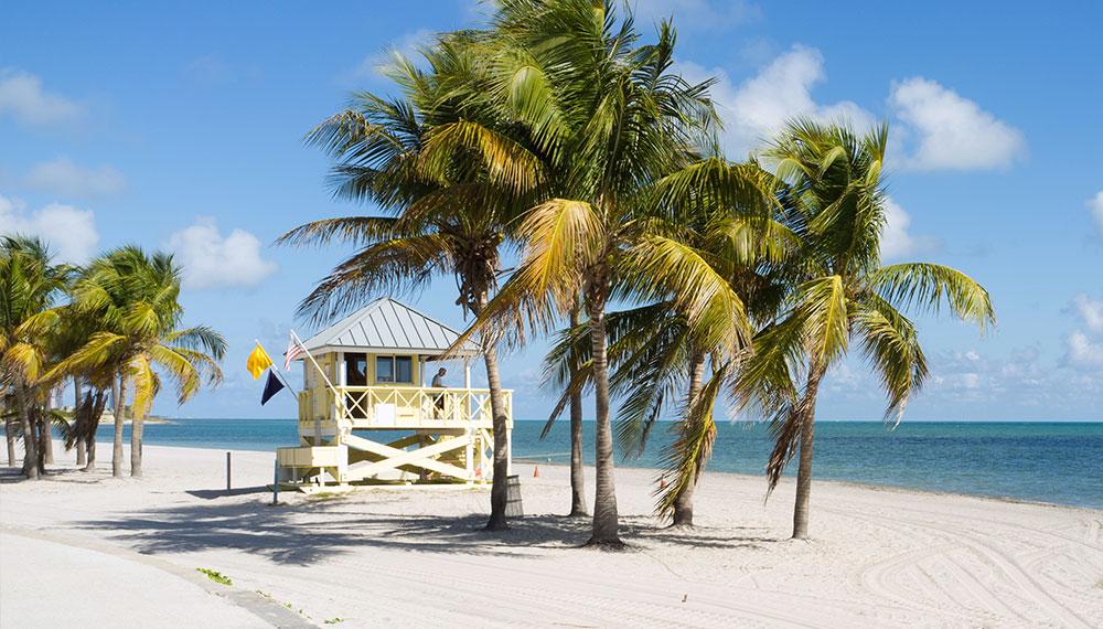 Miami - Tour America