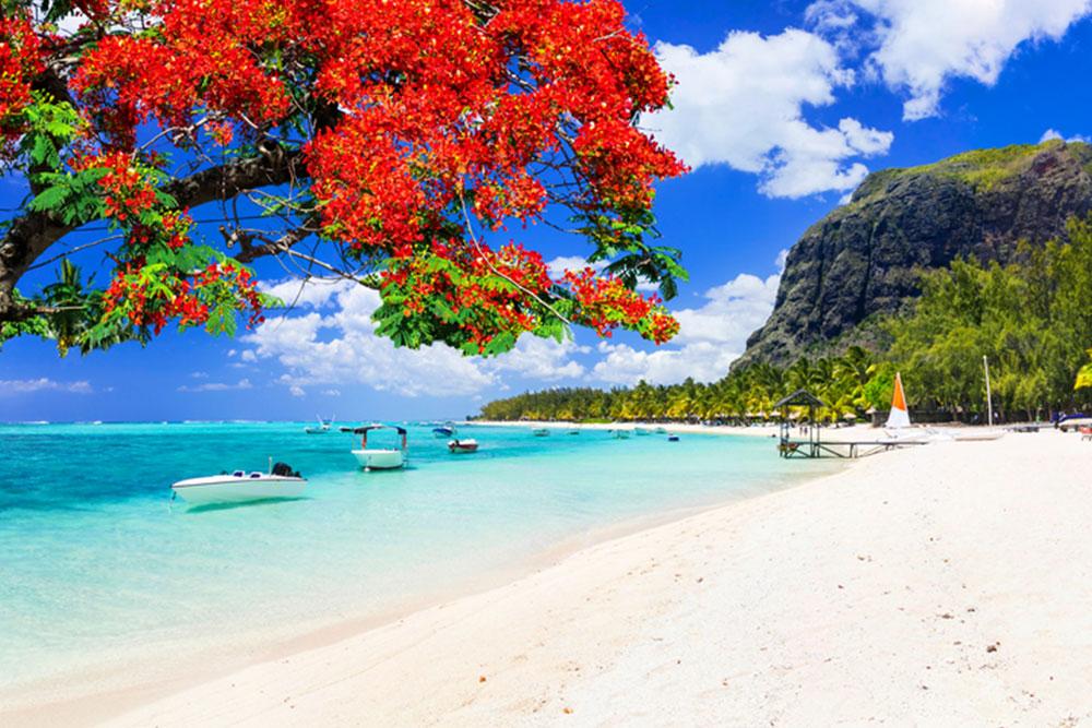 Viaggio alle Isole Mauritius