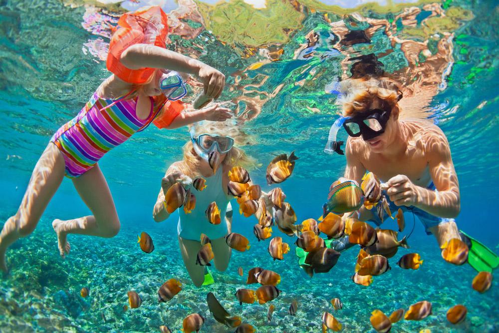 Snorkeling barriera corallina Zanzibar
