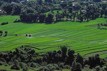 Viaggi Romantica Bali