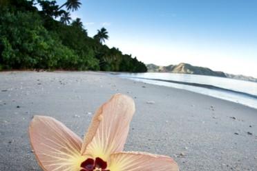 Viaggi Fantastica Nuova Caledonia