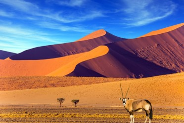 Viaggi Gran Tour Namibia