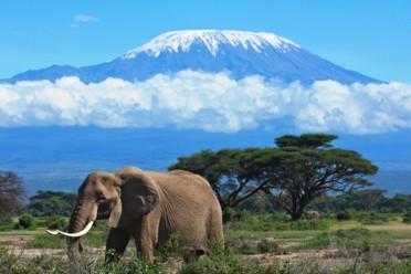 Viaggi Sposarsi in Kenya