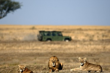 Viaggi Minitour colori d'Africa