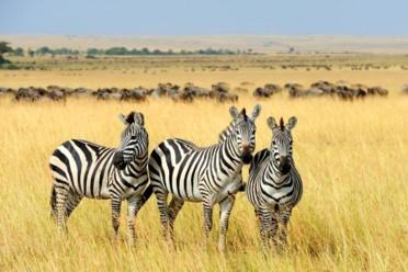 Viaggi Esclusive vacanze e safari in Sudafrica