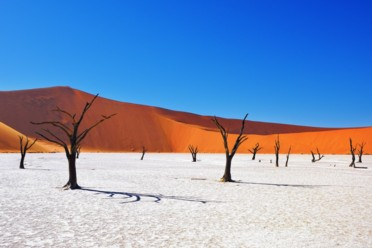 Viaggi Wonders of Namibia