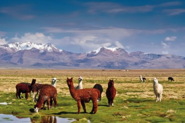 Viaggi Meravigliosi Perù e Bolivia