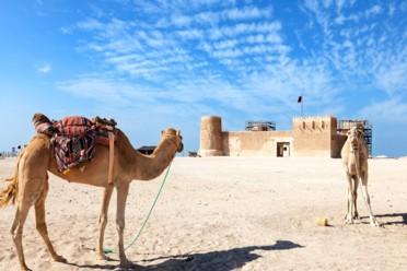 Viaggi Escursioni in Oman