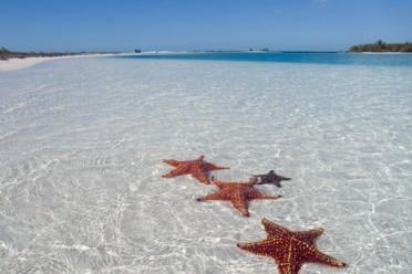 Viaggi Sposarsi a Zanzibar